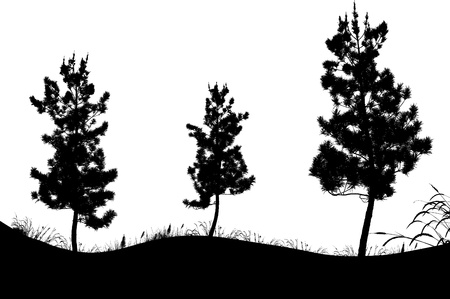 bush to grow up: Vector Illustration Of Tree Silhouette