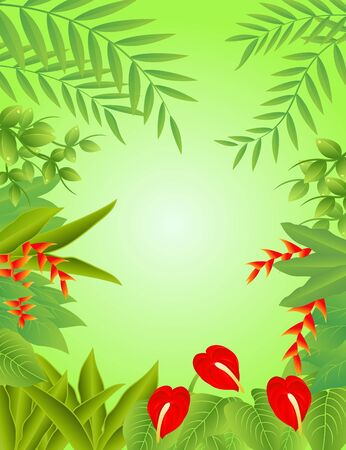 Vector Illustration Of tropical Forest Background Stock Vector - 14805572
