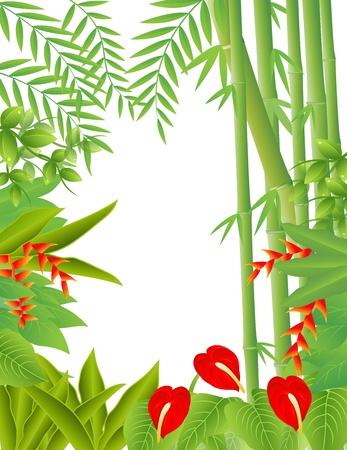 Vector Ilustración De Fondo Bosque tropical