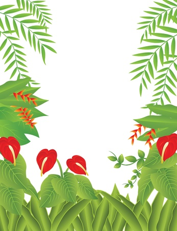 Vector Illustration Of tropical Forest Background Stock Vector - 14805628