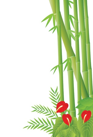 Vector Illustration Of tropical Forest Background