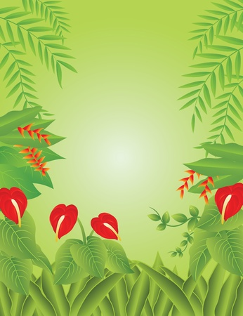 Vector Illustration Of tropical Forest Background Vector