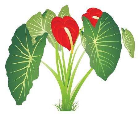 熱帯: 自然の葉の背景のベクトル イラスト