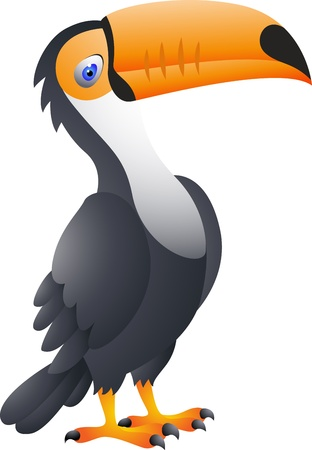 forest conservation: Vector Illustration Of Toucan Bird