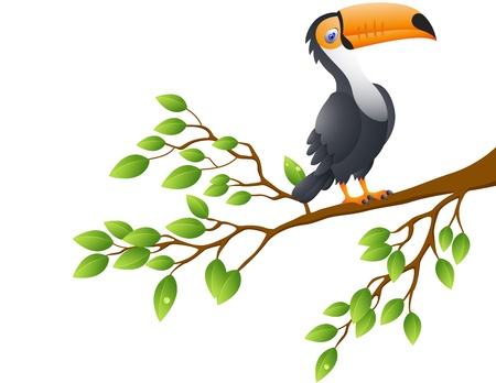 Vector Illustration Of Toucan Bird