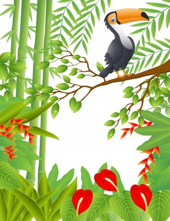 flamboyant: Vector Illustratie Van toekan vogel Stock Illustratie