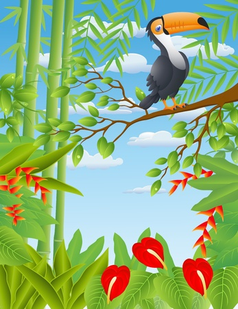 Vector Illustration Of Toucan bird Vector
