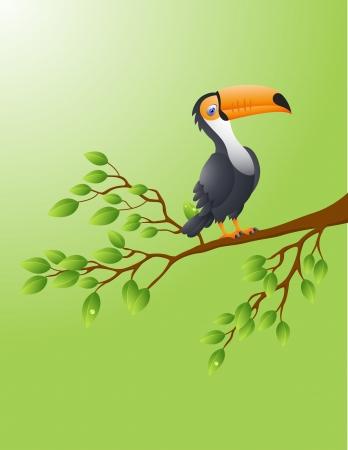 Vector Illustration Of Toucan bird