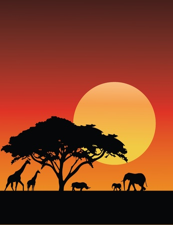 Vector Illustration Of Africa Silhouette Illustration