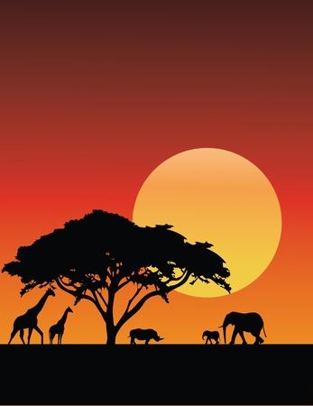 Vector Illustration Of Africa Silhouette Illustration
