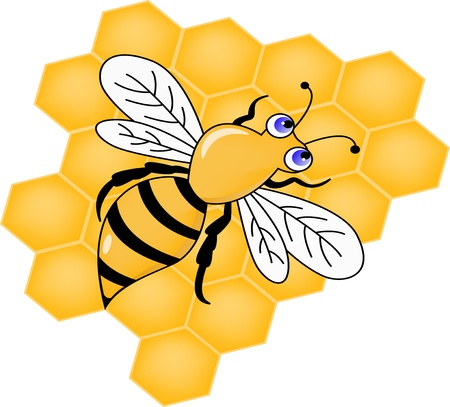 Vector Illustration Of Bee with Honey Vector