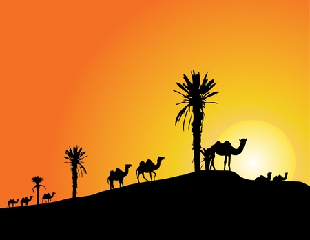 Vector Illustration Of camel silhouettes