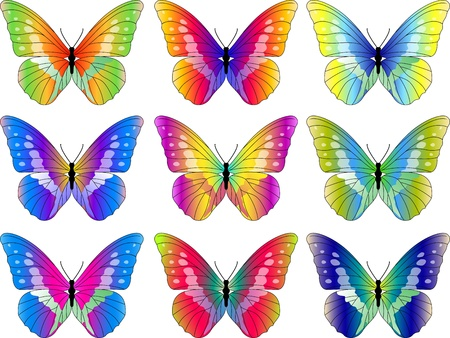 Vector Illustration Of Butterfly Collection Illustration