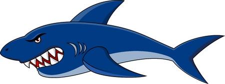 shark cartoon: de dibujos animados de tiburón
