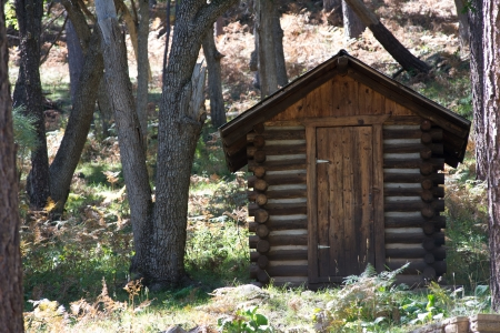 outhouse: An outhouse in the woods