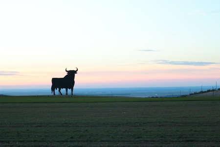 Toro Osborne, iconic symbol of Spain, silhouette of black bull