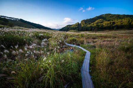 The Susuki at Tonomine highlands Stock fotó
