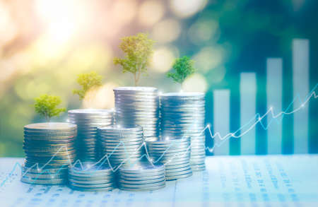 Money growing concept,Business success concept Stable like a big tree Tree growing on pile of coins money,for saving or investment for a house, retirement Foto de archivo