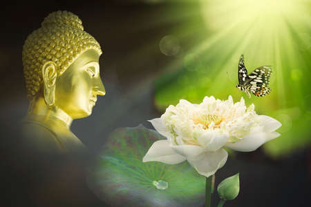double exposure of the lotus flower or water lily and face of buddha statue. Buddhism is popular in china japan and thai people so many culture of Thailand involved buddha.
