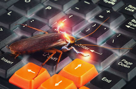 Cockroach climbing on keyboard to present about computer attacked from virus. a computer virus in an electronic cockroach, and usb flash next to the laptop keyboard.