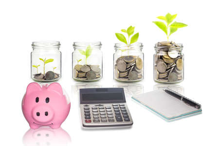 Pink piggy bank, calculator, Money growing plant step with deposit coin,  seed in clear bottle on white background. investment ,bank ,concept, saving money