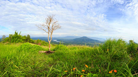 Abstract the viewpoint at the mountain in the Phu Pa por Fuji at Loei, Loei province, Thailand fuji mountain similar to Japan's Fuji mountain.(Thai language mean Fuji Loei Province ) Foto de archivo - 134717067