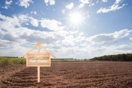 Empty dry cracked swamp reclamation soil, land plot for housing construction project with car tire print in rural area and beautiful blue sky with fresh air Land for sales landscape concept Foto de archivo - 134717072