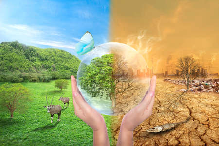 Global Warming and human waste ,Pollution Concept.Sustainability. showing the effect of arid land with tree changing environment, Concept of climate change.