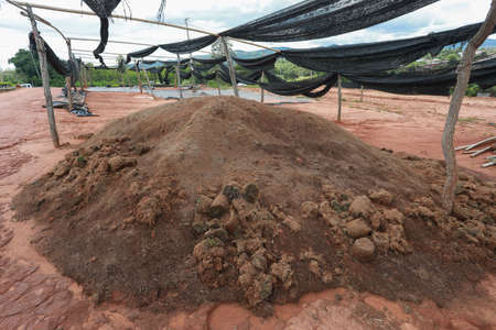 Clean soil for cultivation. The potting soil or peat is suitable for gardening and is one of the four natural elements. The land is life for our planet earth.