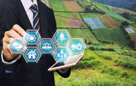 Innovation technology for smart farm system, Agriculture management, Hand holding smartphone with smart technology concept.To collect data to study.