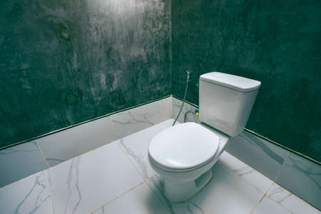 Ceramic white toilet bowl near grey wall, side light in the modern bathroom. Modern interior of restroom with ceramic toilet bowl