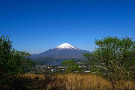 mount fuji Stok Fotoğraf