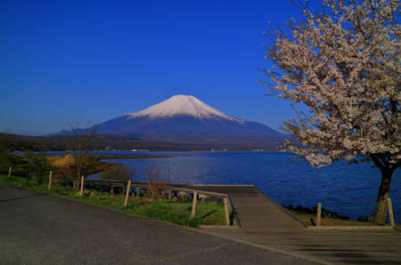 Mount Fuji from Lake 免版税图像