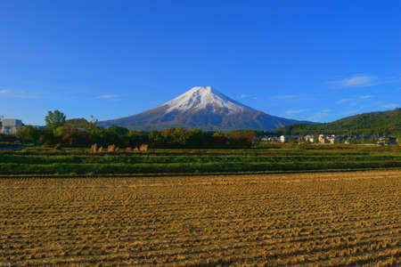 Mt.Fuji crowned snow 免版税图像