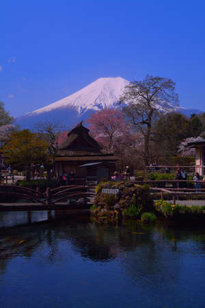 Mount Fuji in spring from