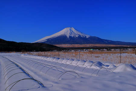 Farmland of Oshino Village snowy blue sky and Mt.Fuji 免版税图像