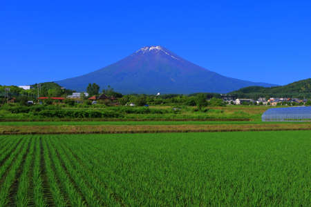 Mt.Fuji of blue sky from Fujiyoshida City Japan 06 / 25 / 2018 免版税图像