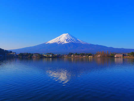 Mount Fuji of blue sky from Ubuyagasaki in Lake Kawaguchi Japan 04/09/2020 免版税图像