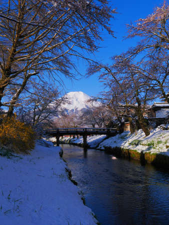 Cherry blossoms and Mt. Fuji in the spring snow scene from Shinnasyo River in Oshino Village Japan 04/14/2020