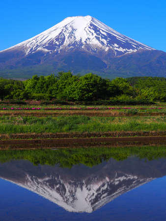 Mt. Fuji in May from Fujiyoshida City Japan 05/14/2020