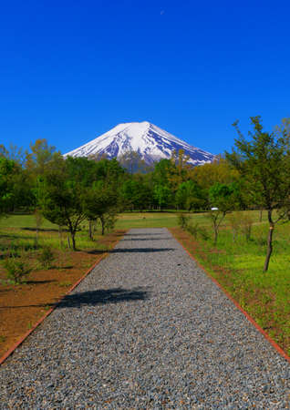 Mt. Fuji in the blue sky from Fuji Walking Park in FujiYoshida City Japan 05/14/2020 免版税图像