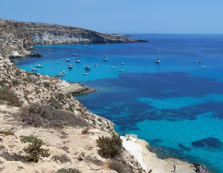 This is the magnificent island of rabbits, in Lampedusa   Editoriali