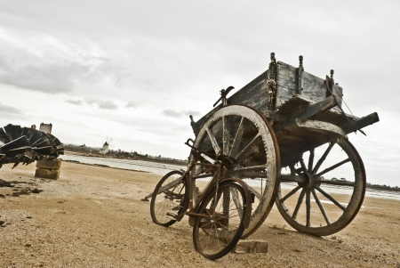 trapani: old Sicilian cart horse  Salines of Trapani  Sicily Stock Photo