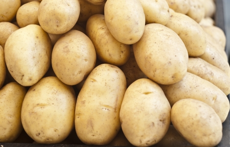 pile of new potatoes for sale to the market