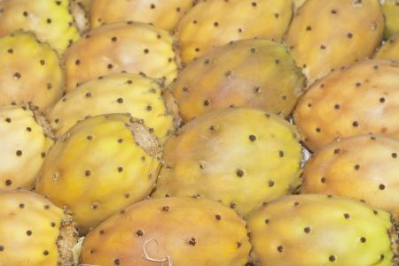 Cactus fruit, prickly pears in sicilian market Stock Photo - 17045646