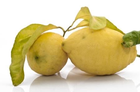 yellow sicilian fresh lemons isolated on a white background Stock Photo - 18014846