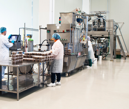 factory automation: tasty olives packaging production in factory