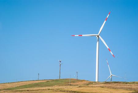 wheatfield: Wheatfield with windmills on blue sky