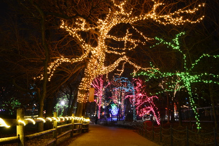 Chicago, USA, 31st December 2016 : To walk through the luminous display at New Year's Eve at Lincoln Park Zoo in Chicago.