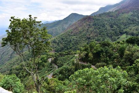 A Panoramic View Of Kodaikanal